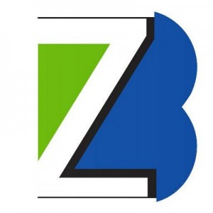 Brightzone logo