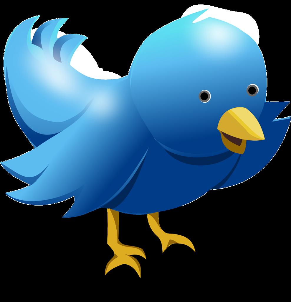 Tweet, Tweet: An Introduction to Twitter
